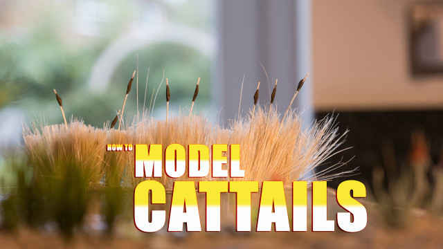 How to Model Cattails